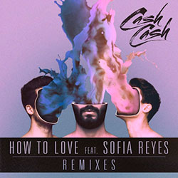 Cash Cash feat. Sofia Reyes - How To Love (Arty Remix)