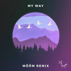 Calvin Harris - My Way (MÖÖM Remix)