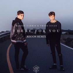Martin Garrix and Troye Sivan - There For You (REGON Remix)