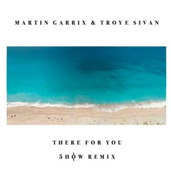Martin Garrix feat. Troye Sivan – There For You (William Yang Cover) (5how Remix)