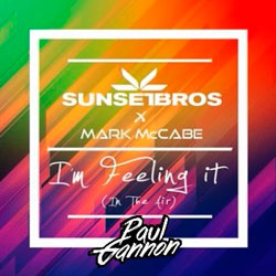 Sunset Bros and Mark McCabe - I'm Feeling It (Paul Gannon Remix)