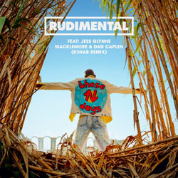 Rudimental - These Days (R3hab Remix)