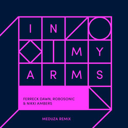 Ferreck Dawn x Robosonic x Nikki Ambers - In My Arms (Meduza Remix)