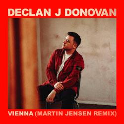 Declan J Donovan - Vienna (Martin Jensen Remix)