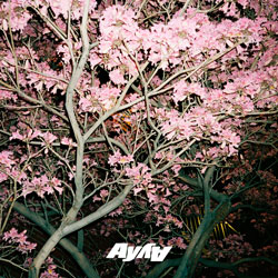 AY AY feat. QNTN - What You Need (Marc Benjamin Remix)