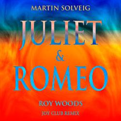 Martin Solveig and Roy Woods - Juliet x Romeo (Joy Club Remix)