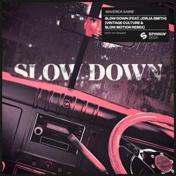 Maverick Sabre feat. Jorja Smith - Slow Down (Vintage Culture x Slow Motion Remix)