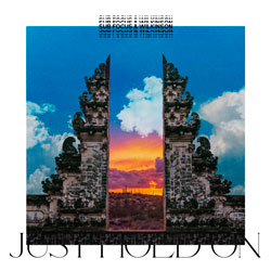 Sub Focus and Wilkinson - Just Hold On (Sub Focus x Wilkinson vs. Pola x Bryson Remix)