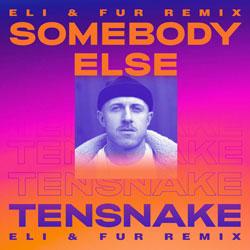 Tensnake feat. Boy Matthews - Somebody Else (Eli & Fur Remix)