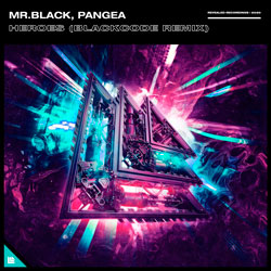 MR.BLACK x Pangea - Heroes (Blackcode Remix)