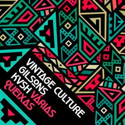 Vintage Culture - Varias Queixas (Vintage Culture x KVSH Remix)